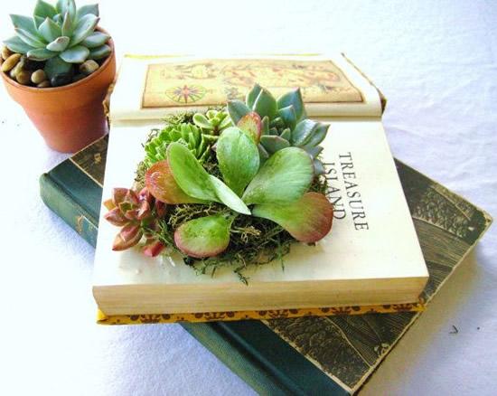 Como plantar em um livro