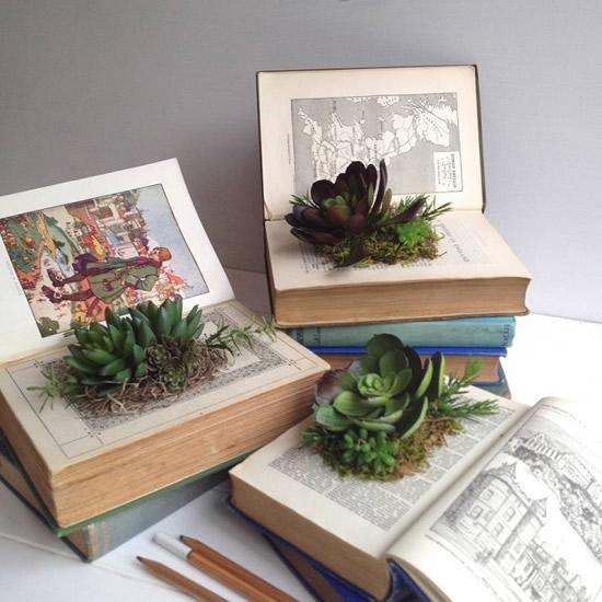 Dicas para plantar dentro de um livro