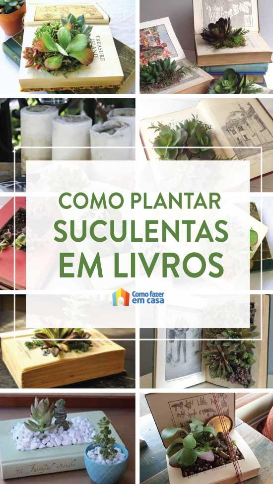 Como plantar suculentas dentro de livro