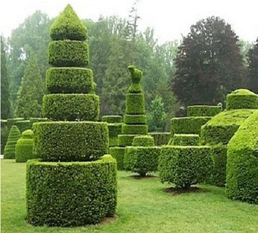 jardim ideias baratas:10 ideias para decorar o jardim de forma barata com criatividade