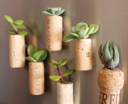 mini jardim reciclado:Carrinhos de mão sim, por que não? Fica lindo demais, e ainda