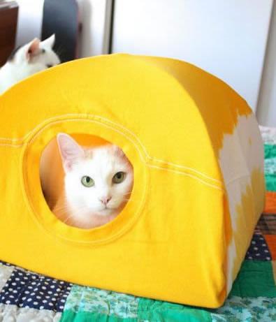 Como fazer casinha para cães e gatos