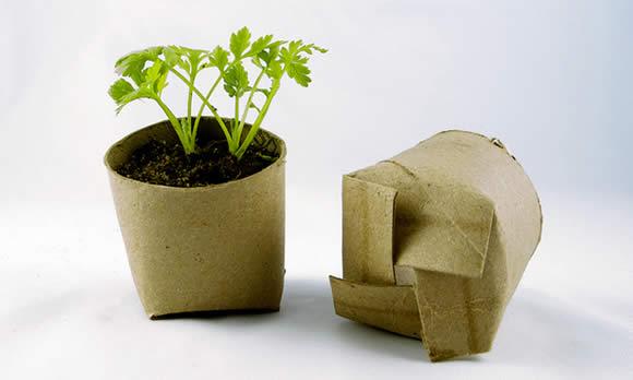 Como fazer artesanato com rolo de papel higiênico