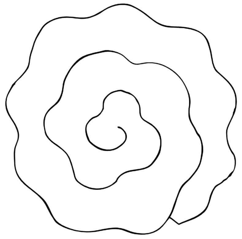 Molde para flor em espiral
