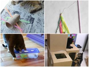 Como Fazer Brinquedos para os Gatinhos - 10 Ideias