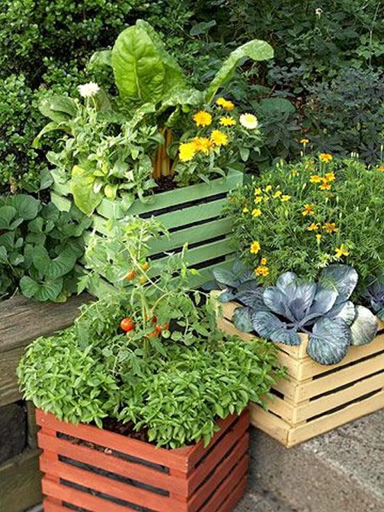Decoração com caixotes no jardim