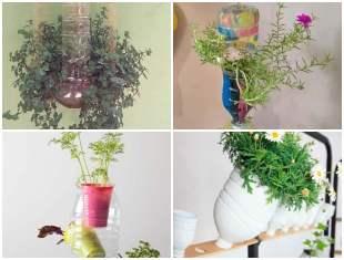 Inspirações com Vasos de Garrafa PET