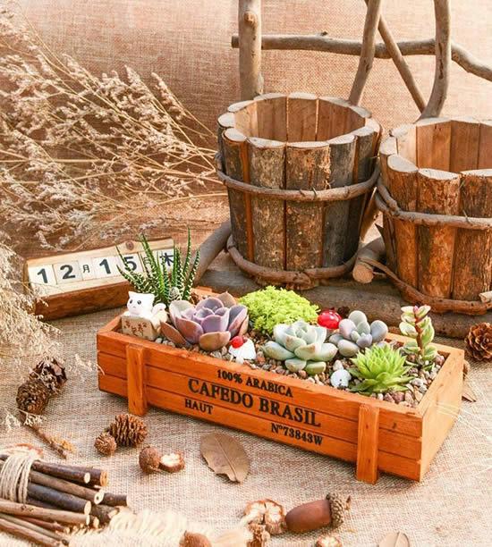 Mini jardim de suculentas em caixote de madeira