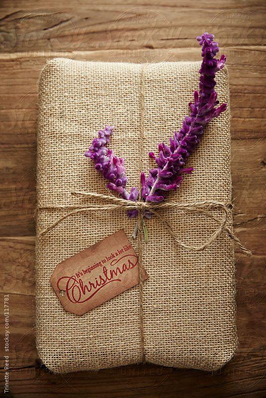 decoração com plantas em embalagem