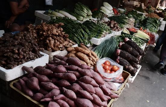 10 benefícios da batata doce