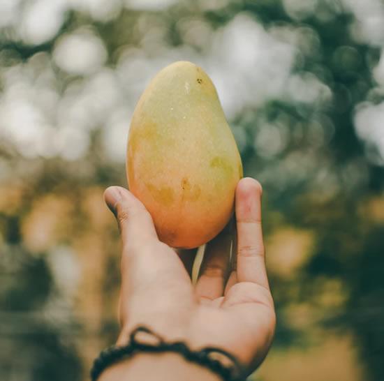 8 benefícios de comer manga
