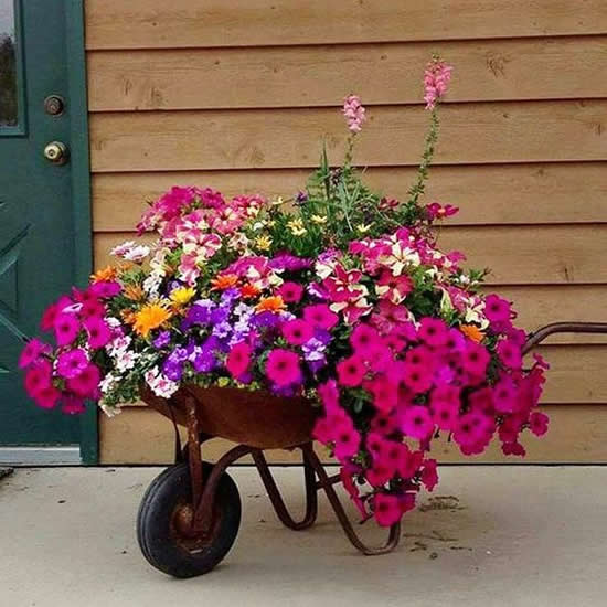 Dicas para decoração de jardim