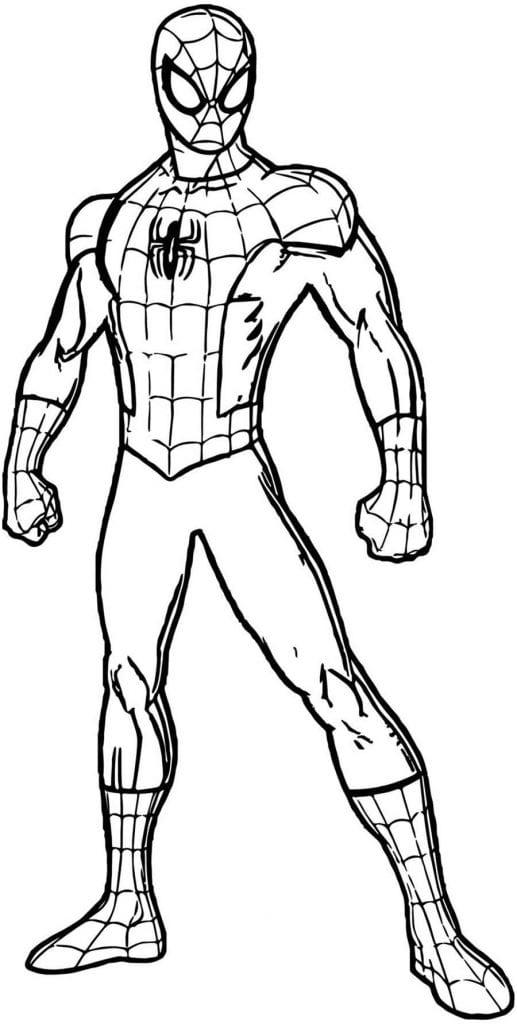 Molde de Homem-Aranha para pintar