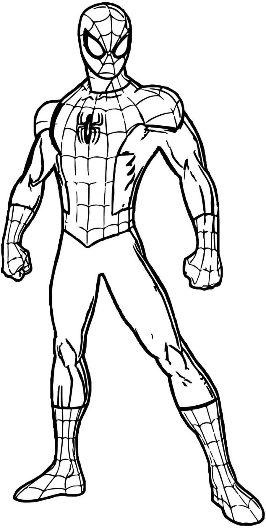 Desenhos De Homem Aranha Para Colorir Como Fazer Em Casa