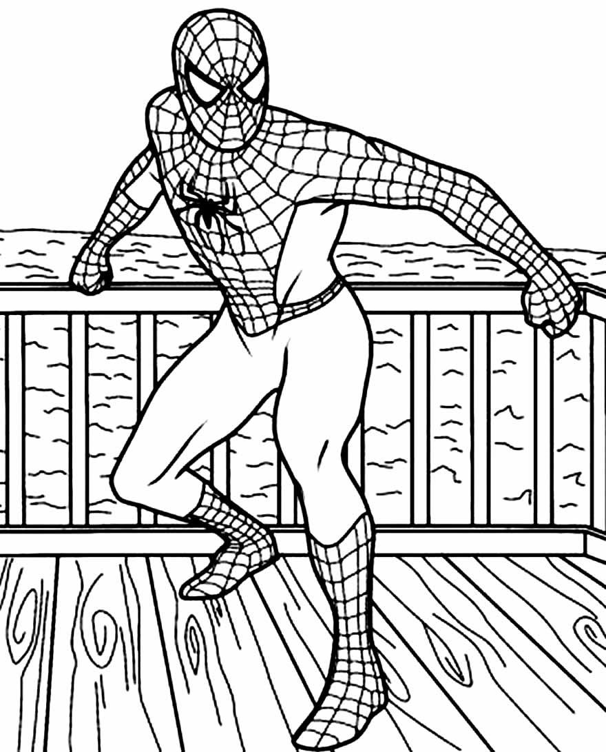 Imagem de Homem-Aranha para pintar