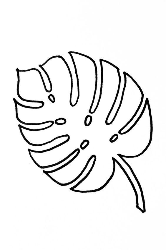 Moldes de folhas costela-de-adão