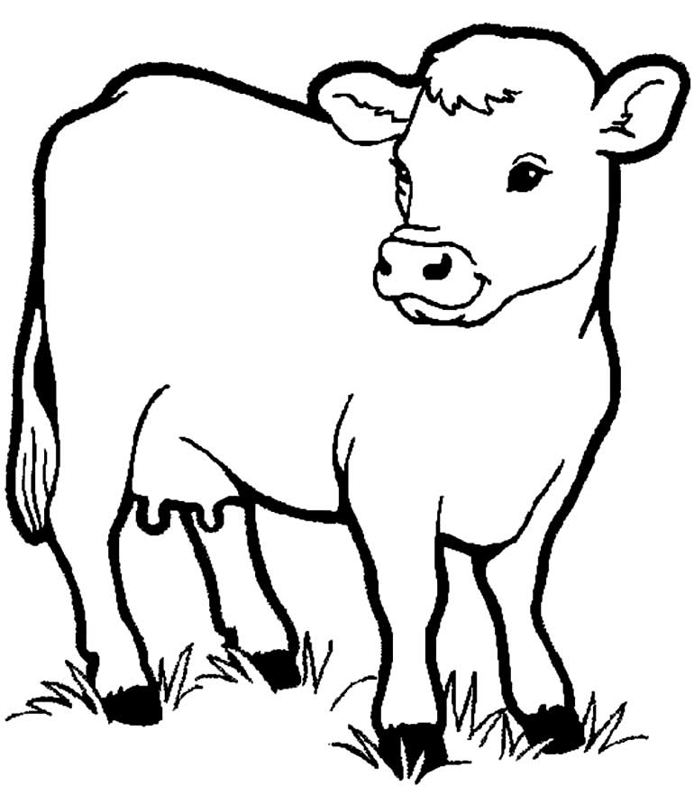 Desenho de vaquinha para colorir