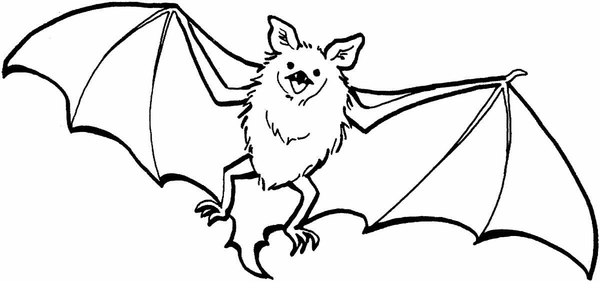 Desenho de morcego para colorir