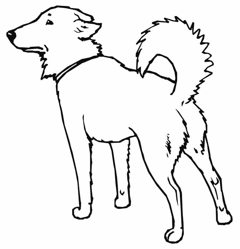 Desenho de cachorro para colorir