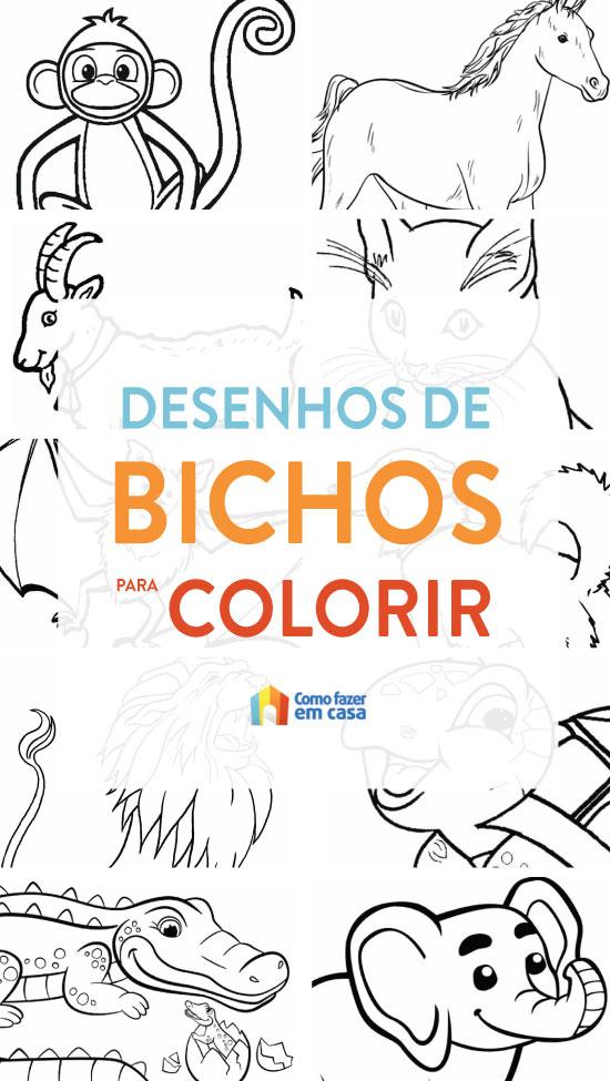 Desenhos de bichos para colorir