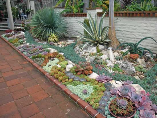 Inspirações para fazer jardim de suculentas
