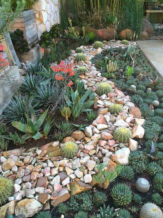 Jardim de suculentas para inspiração