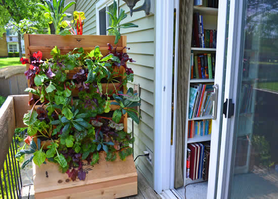 Parede verde na varanda