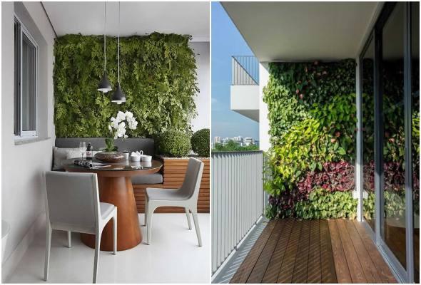 20 inspirações de parede viva para varanda