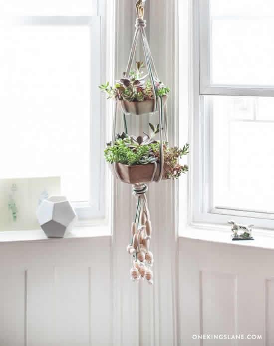 Lindas plantas para decoração do apartamento