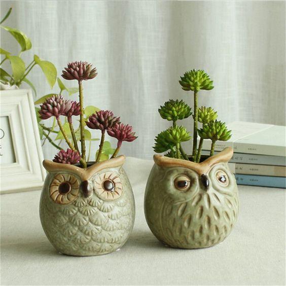 vasos de bichinhos para suculentas