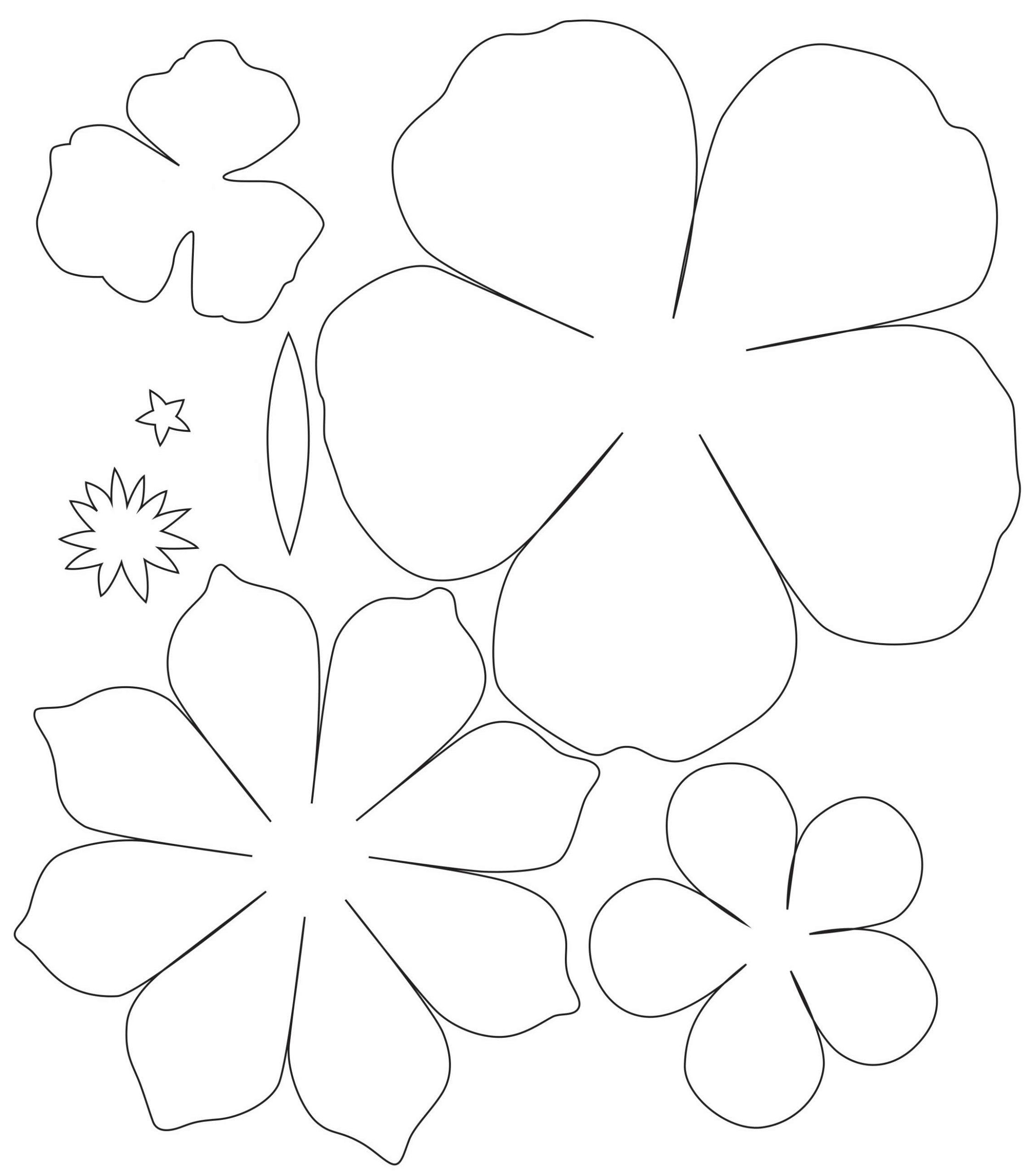 Moldes para flor de papel