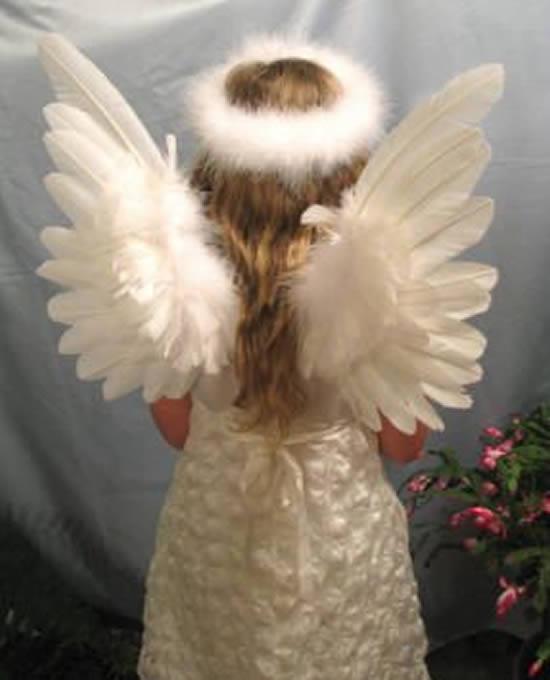 Asa de anjo para fantasia