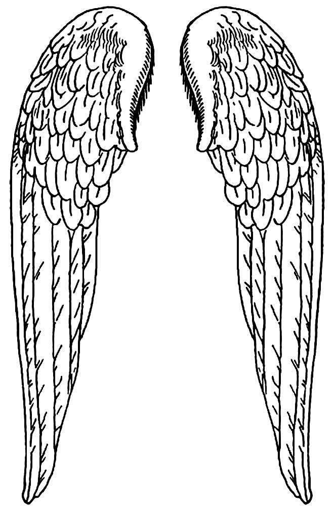 Molde de asas de anjo