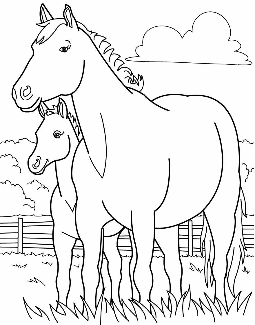 Desenho para colorir de cavalos
