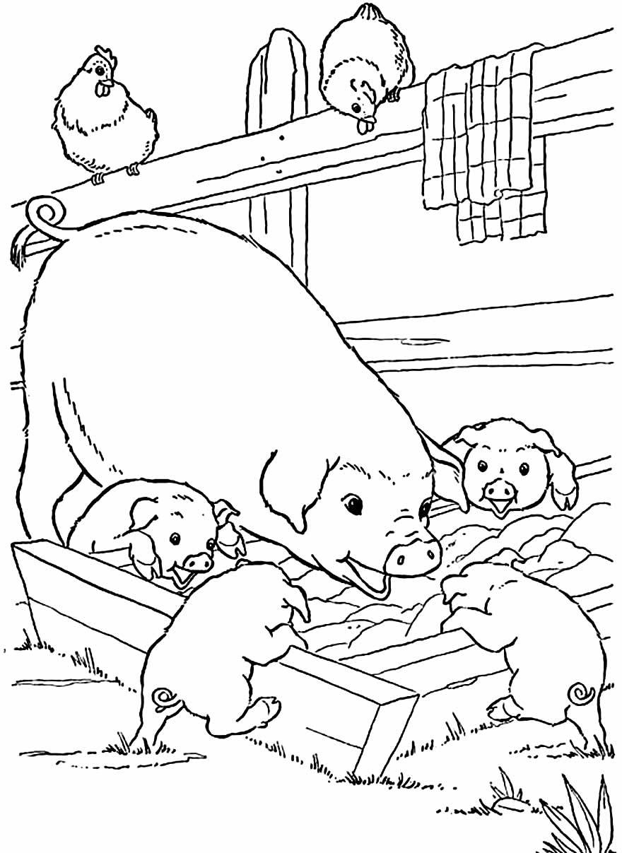 Desenho para colorir de porcos
