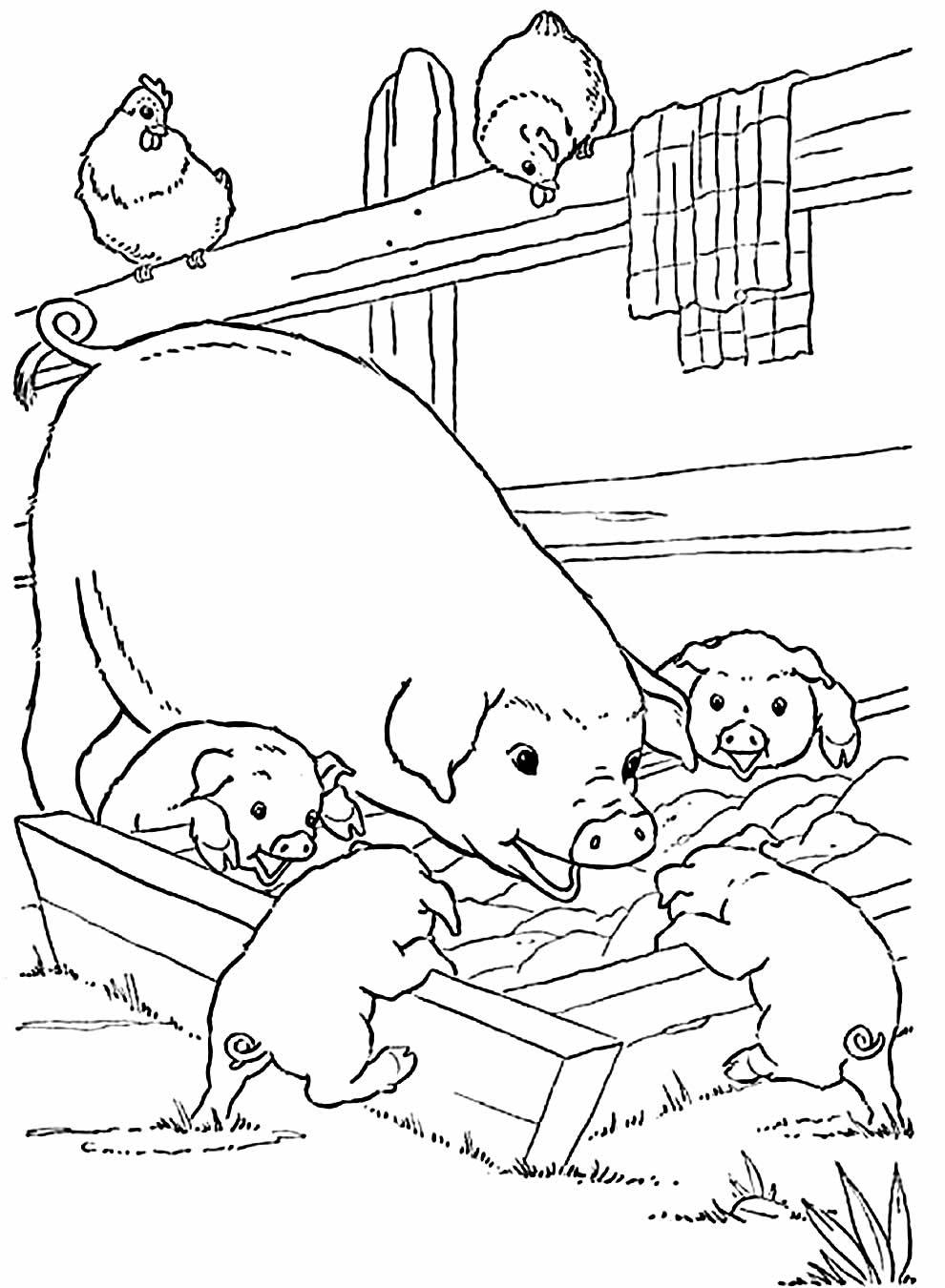 Desenhos para colorir de porcos