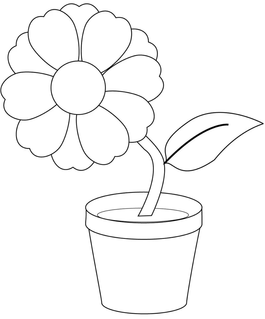 Desenhos de flor para pintar