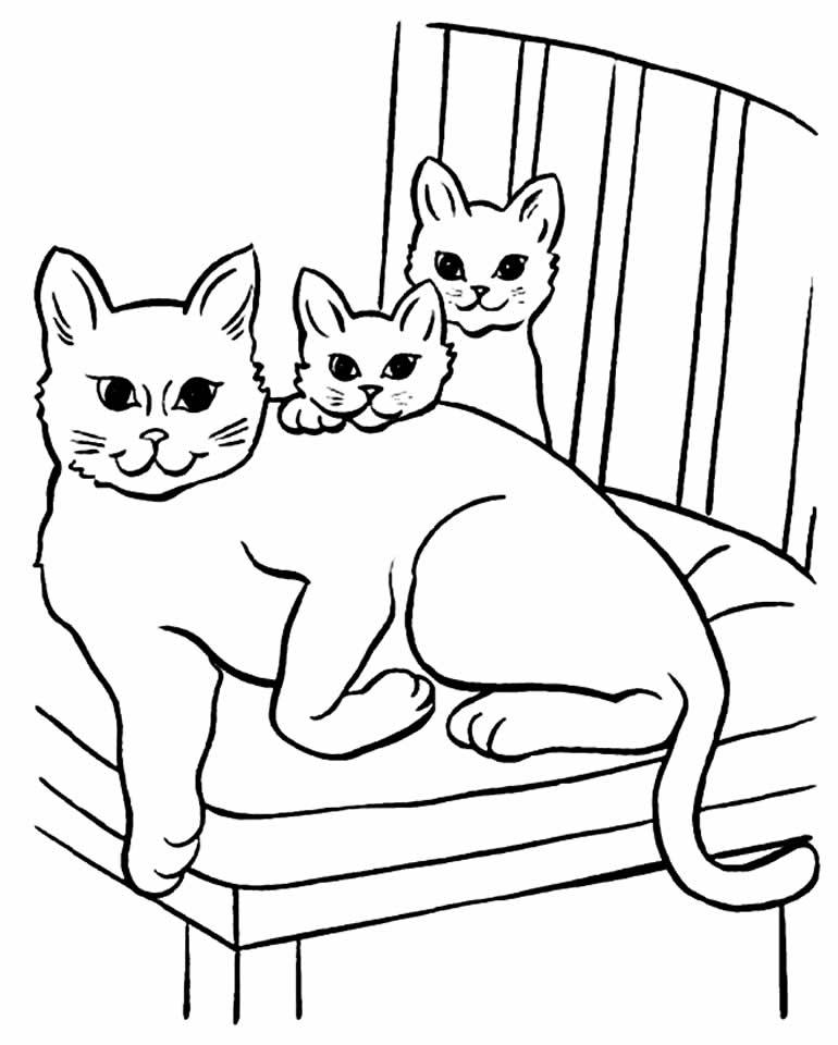 Desenho para colorir de gatinhos