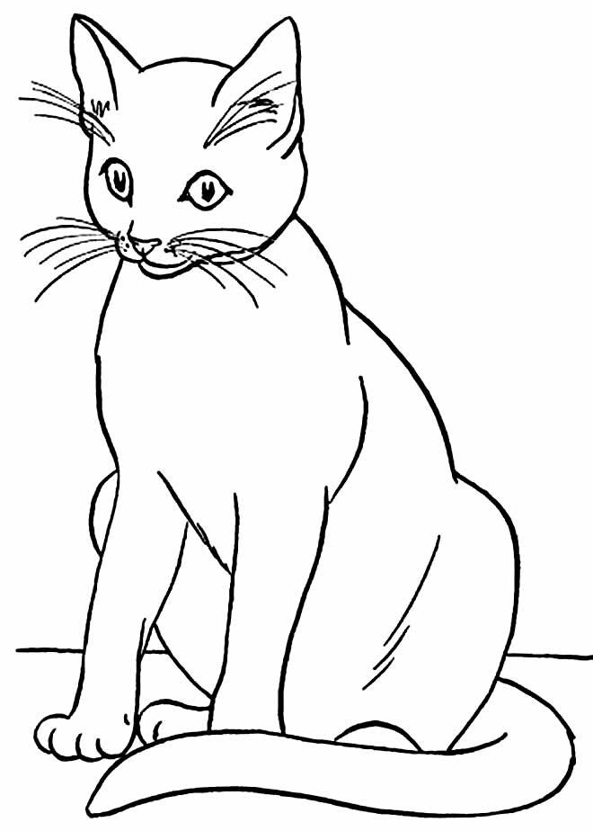 Desenho para pintar de gato
