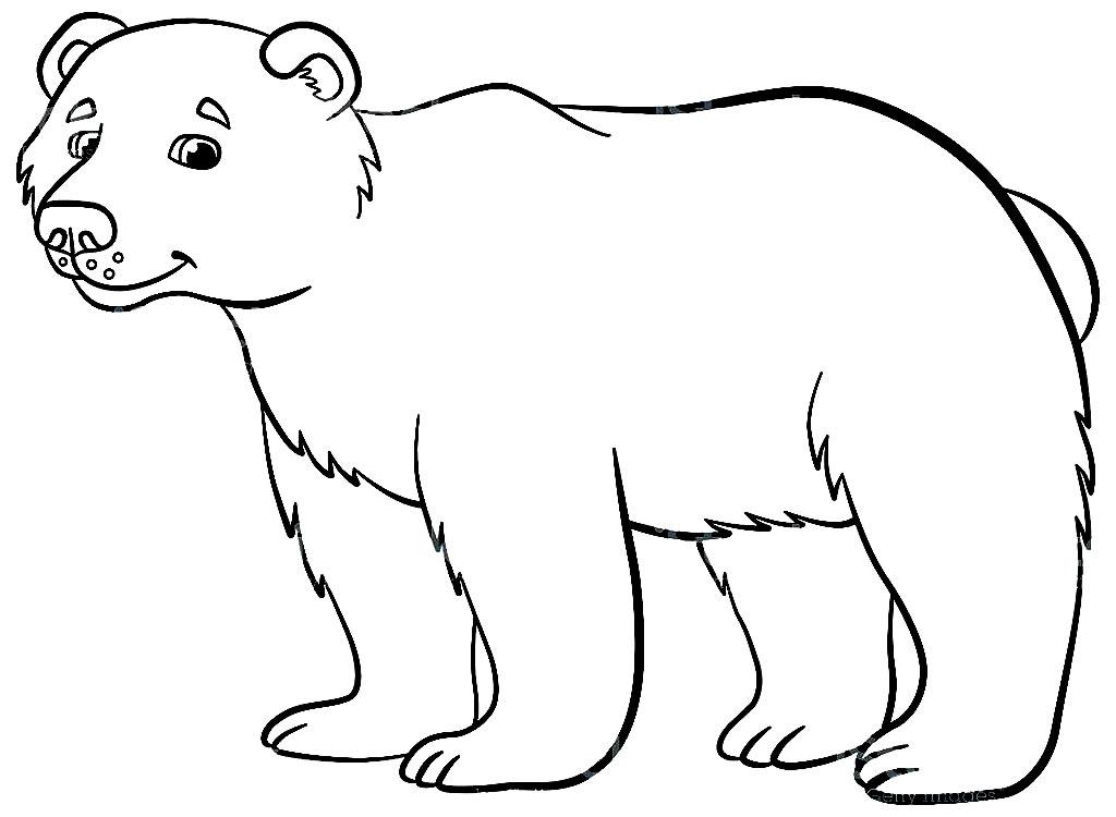 Desenho de urso