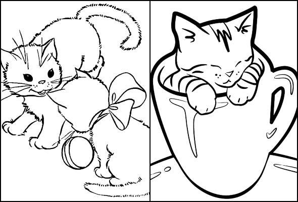 Desenhos de gatinhos para colorir