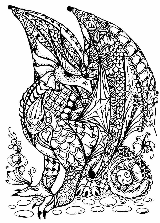 Desenho de Dragão para imprimir e pintar