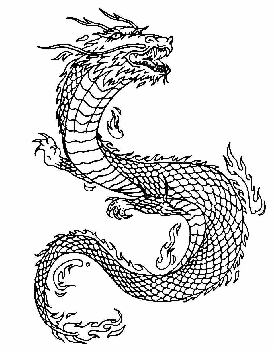 Desenho de Dragão Oriental