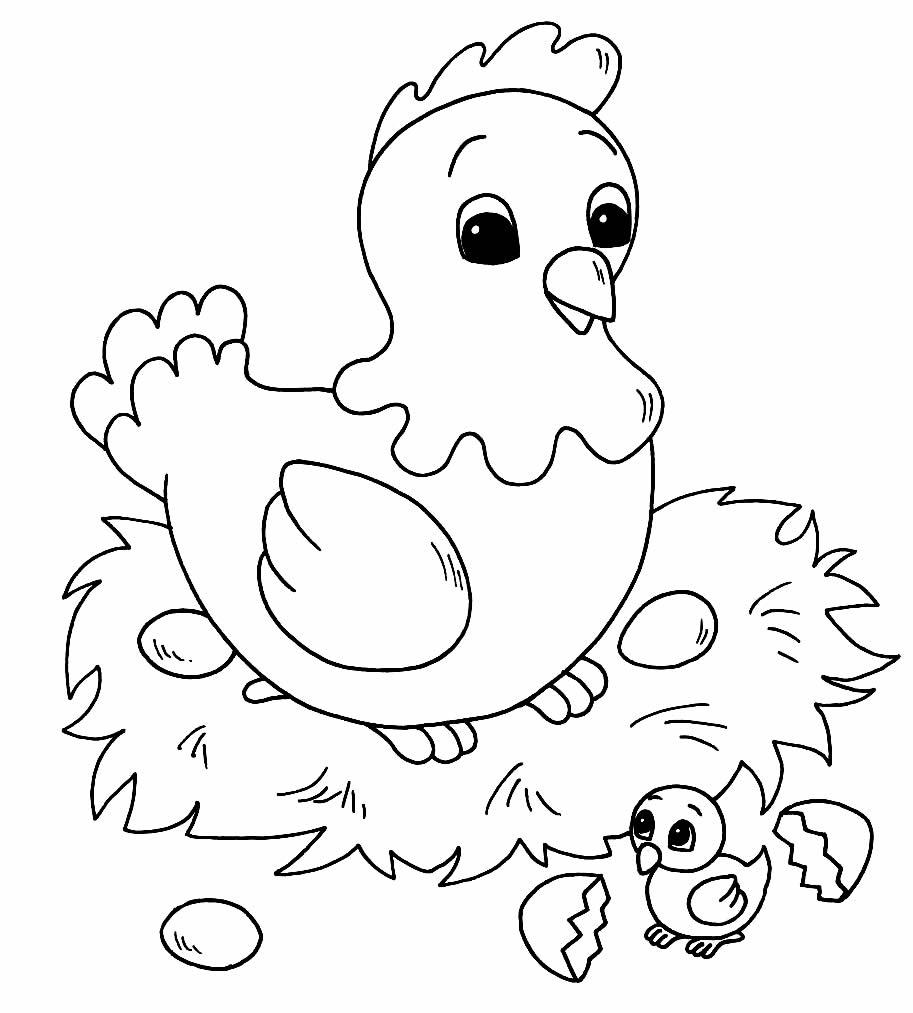 Desenho para pintar de Galinha