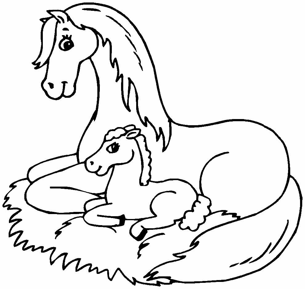 Imagem de cavalo para pintar
