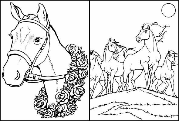 Desenhos para colorir de Cavalos