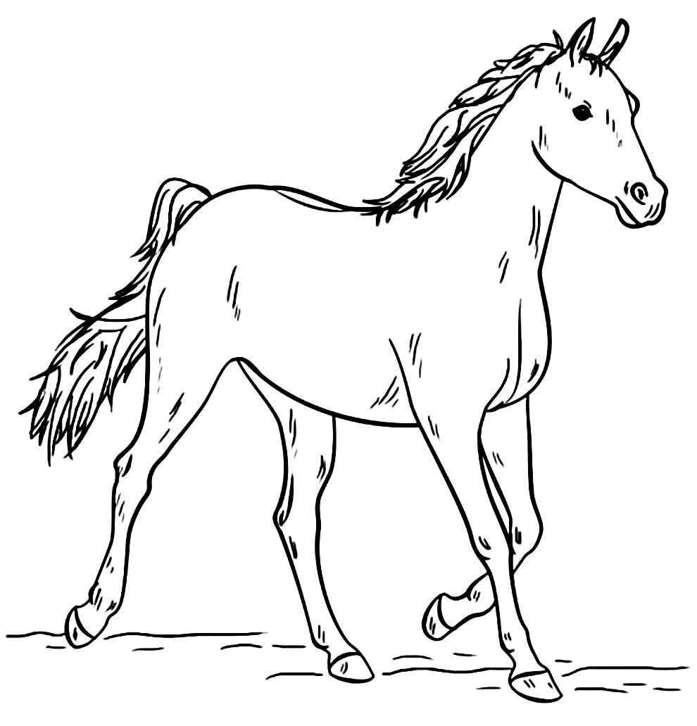 Desenho lindo de Cavalo para colorir