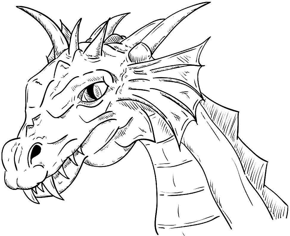 Desenho de dragão para pintar