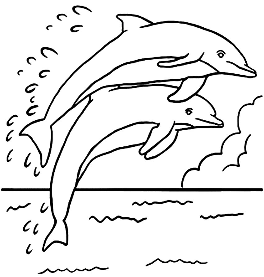 Molde de golfinho para imprimir