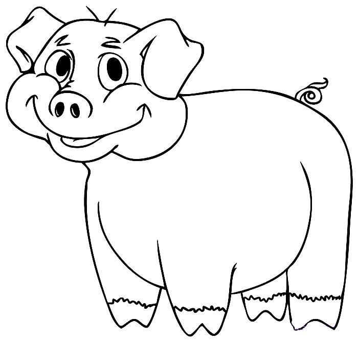 Desenho porquinho para colorir
